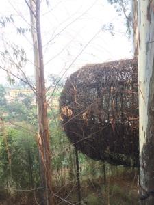 Dusun Bambu Family Leisure Park Lutung Kasarung Resto