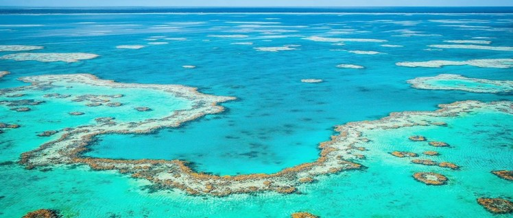 Great Barrier Reef, Australia (source: Hamilton)